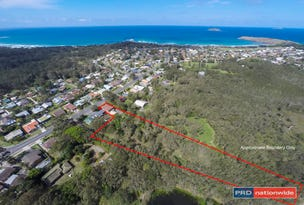 70 Diamond Head Drive, Sandy Beach, NSW 2456