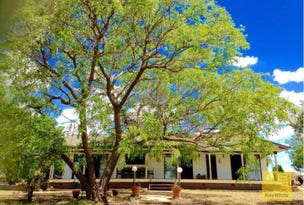 2011 BUTLERS ROAD, Drillham, Qld 4424
