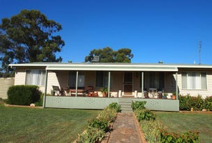 174A Caswell Street, Peak Hill, NSW 2869