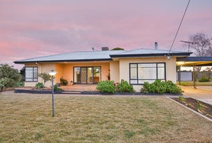 256 Morpung Avenue, Irymple, Vic 3498