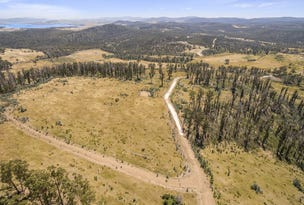 Lot 9 Drover Rise, Sugar Loaf Road, Carlton River, Tas 7173