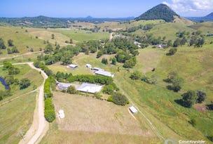 249 Upper Pinbarren Creek Road, Pinbarren, Qld 4568