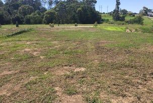 Lot 503 Huntingdale Park Estate, Berry, NSW 2535