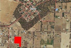Lot 239 Col Watsons Rd, Mundulla, SA 5270