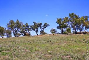 42 Matilda Crescent, Gumly Gumly, NSW 2652