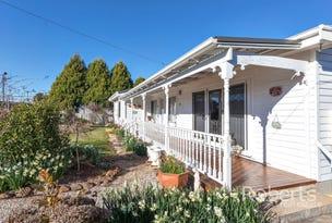 39 George Street, Scottsdale, Tas 7260