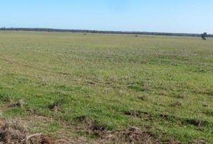 Lot 2 183 Boltes Lane, West Wyalong, NSW 2671