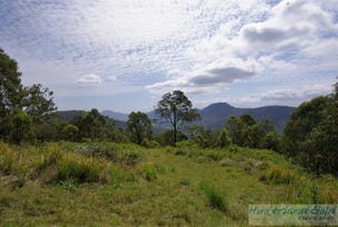 Lamington National Park Road, Canungra, Qld 4275