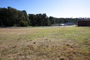 Lot 55, Ocean View Drive, Bermagui, NSW 2546