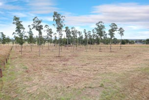 Lot 4&5, 4&5 Red Hill Road, Wilsons Plains, Qld 4307