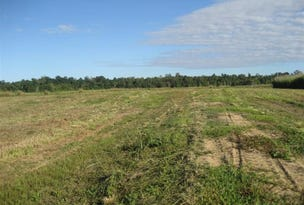 Lot 1 Bruce Hwy Silky Oak Street, Tully, Qld 4854