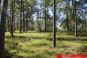 Lot 202 Van Hensbroek Road, Bauple, Qld 4650