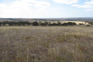 Lot 1 Yungermere Road, Gnowellen, WA 6328