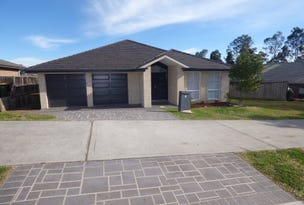4 Saddlers Drive, Gillieston Heights, NSW 2321