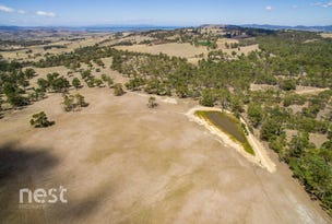 Lot 1 Tullamore Road, Orielton, Tas 7172