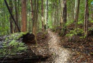 584 Moonabung Road, Vacy, NSW 2421