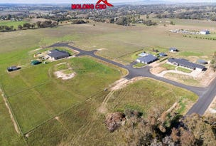 Lot 8, 16 Foys Drive, Molong, NSW 2866