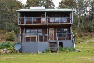 Lot 9/318 Wiiteena Road, Jackeys Marsh, Tas 7304