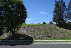 25 River Oak Crescent, Scotts Head, NSW 2447