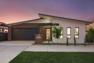 16 Fingal Street, Crace, ACT 2911