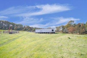 2382 Victoria Valley Road, Victoria Valley, Tas 7140