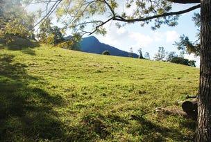 Lot 4 PALMERS ROAD, Terragon, NSW 2484