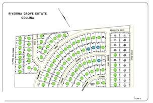 . Riverina Grove Estate, Clifton Boulevard, Griffith, NSW 2680