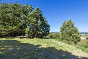 22 Main Road, Beech Forest, Vic 3237
