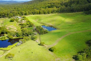 336 Mighell Road, Yarrahapinni, NSW 2441