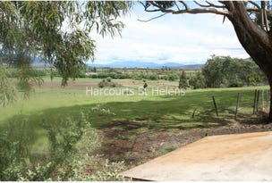 Lot 3 Gardiners Creek Road, St Marys, Tas 7215