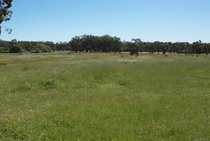 226 Irrigation Way, Narrandera, NSW 2700