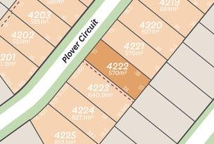 Lot 4222 Plover Circuit, Aberglasslyn, NSW 2320
