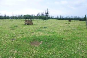 Taries Lane, Norfolk Island, NSW 2899