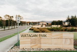 Wattlebird Avenue, Cooranbong, NSW 2265
