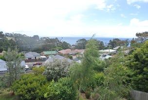 22 Villiers Street, Parklands, Tas 7320