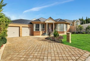 6 Larsen Court, Highbury, SA 5089