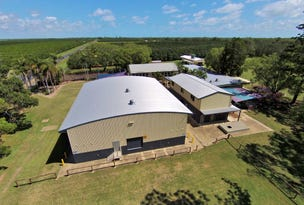 669 Moore Park Road, Welcome Creek, Qld 4670