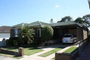 20 Wilkinson Ave, Birmingham Gardens, NSW 2287