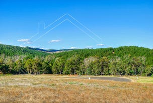 10 (Lot 245) Diggers Green, Nannup, WA 6275