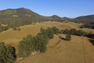 4 Knodingbul Forest Road, Mount George, NSW 2424