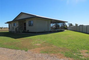 13 Bakerfinch Crescent, Roma, Qld 4455