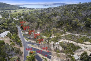 1-8 Reef View Road, Sommers Bay, Murdunna, Tas 7178
