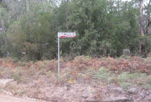 Lot 2 Ingles Road, Devon North, Vic 3971