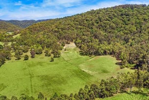 111B Bunning Creek Road, Yarramalong, NSW 2259