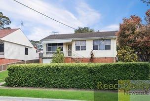 60 Blanch Street, Shortland, NSW 2307