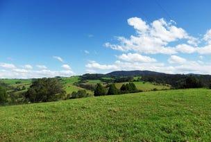 1026 Tyringham Road, Dorrigo, NSW 2453