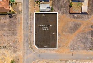 1 Callistemon Court, Utakarra, WA 6530