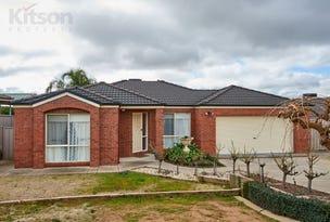 19 Dobell Place, Lloyd, NSW 2650