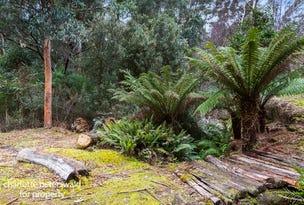 326 Strickland Avenue, South Hobart, Tas 7004