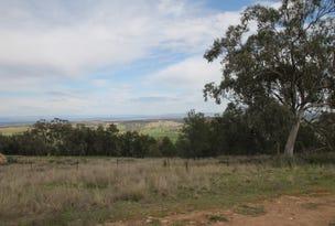 67 Ray Carter Drive, Quirindi, NSW 2343
